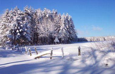 Pistes de ski de Neu Perlé-Ski de fond to Province of Luxembourg