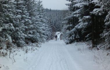 Pistes de ski de la Croix-Scaille-Ski de fond to Province of Luxembourg